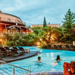 Pool Im Sauna Garten1